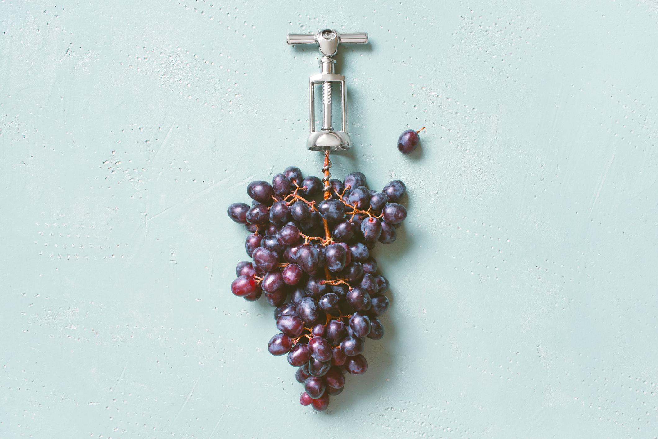 יינות טבעיים, אורגניים וביו-דינאמיים - טרנד חולף או המלצת השף?